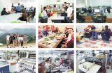 Giới thiệu chung về Công ty In Đông Nam