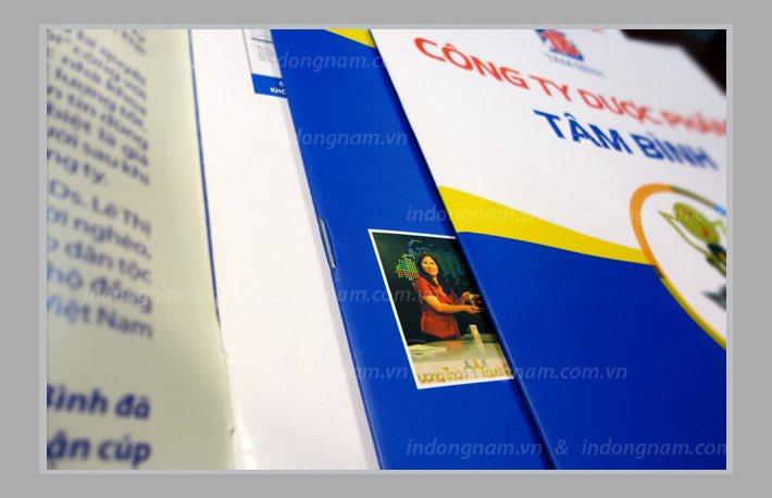 in catalogue cho các công ty dược phẩm