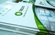 In catalogue công ty vật liệu và trang trí nội thất, xây dựng