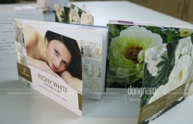 Thiết kế in catalogue mỹ phẩm, spa, thẩm mỹ viện