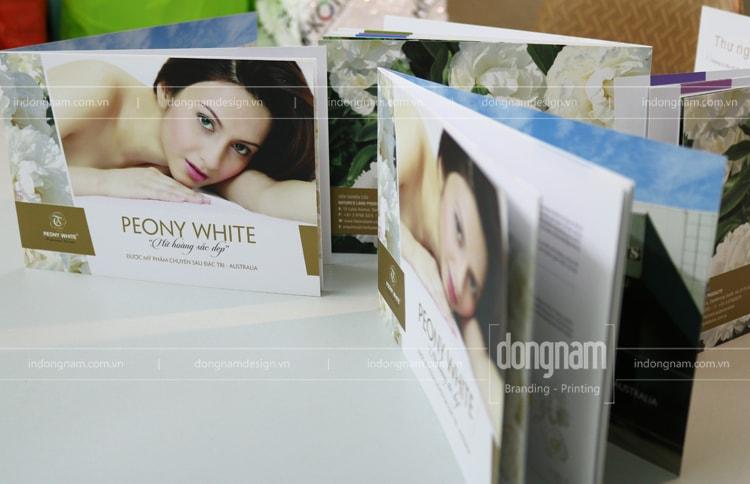 thiết kế in catalogue kinh doanh mỹ phẩm