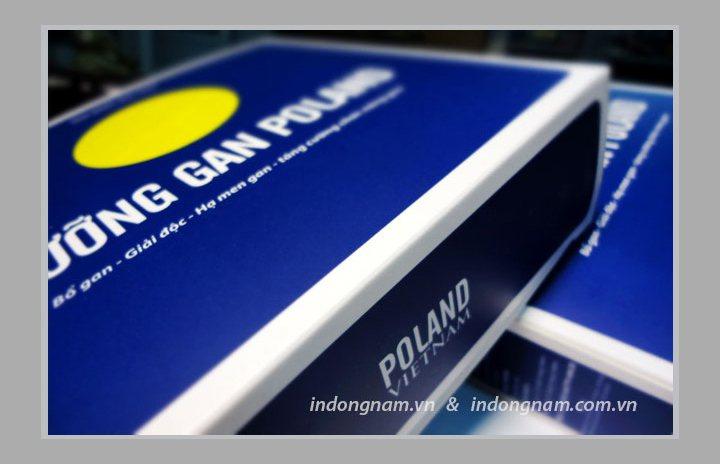 In vỏ hộp giấy thực phẩm chức năng