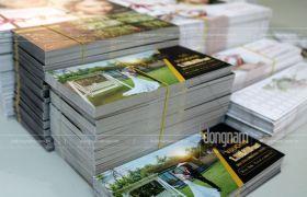 Thiết kế và in voucher dịch vụ cưới hỏi tại Hà Nội