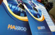 In tờ rơi công ty Hamico