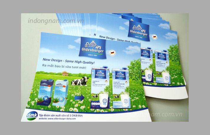 in tờ rơi quảng cáo sữa tươi nhập khẩu từ Đức