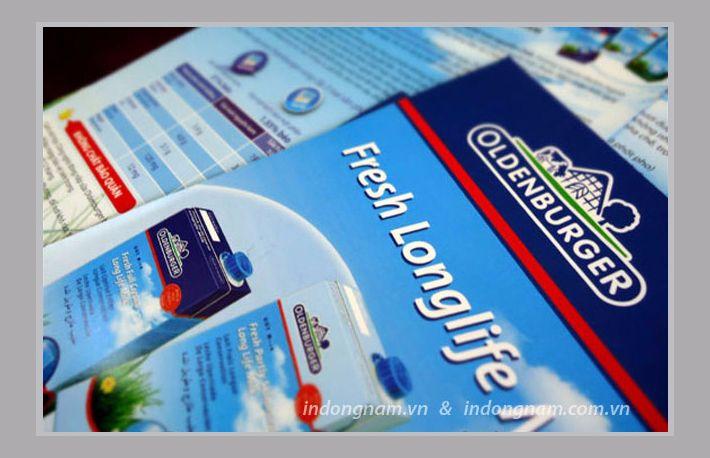 in tờ rơi quảng cáo sữa nhập khẩu