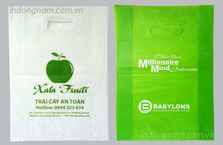 in túi ni lông cho shop hoa quả trái cây