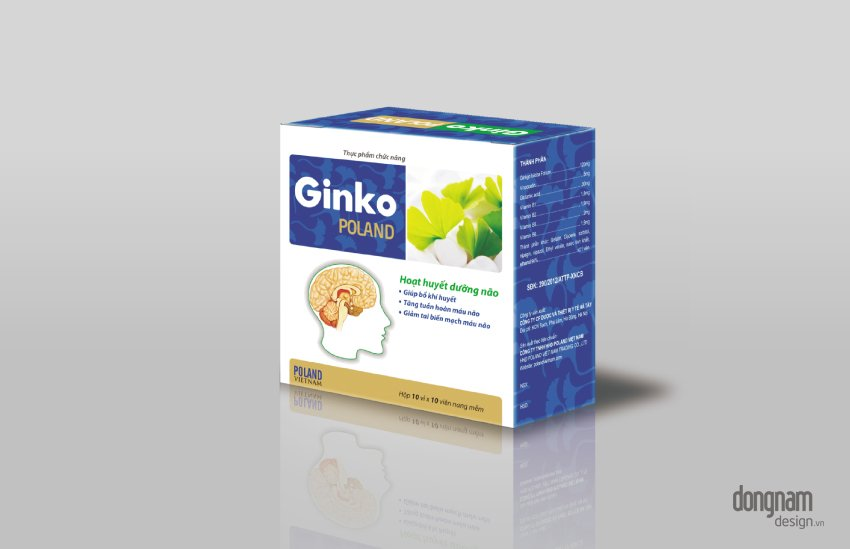 thiết kế bao bì vỏ hộp giấy Ginko