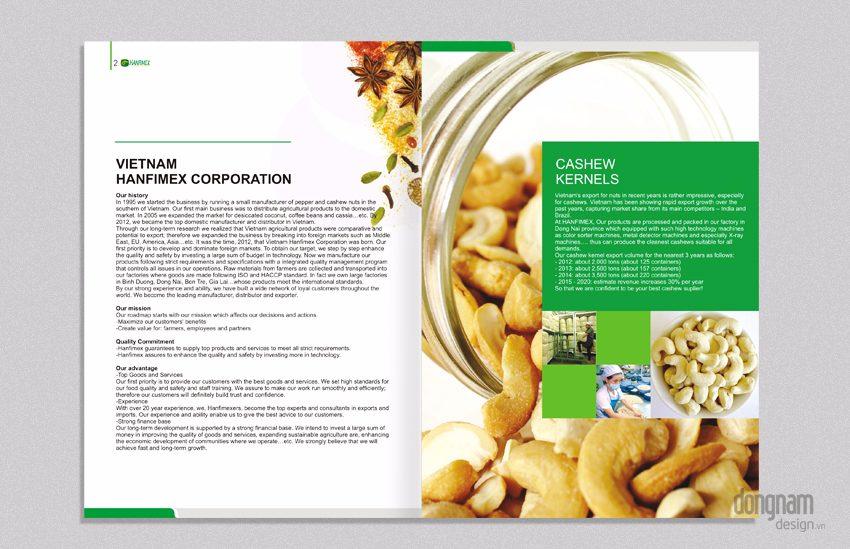thiết kế catalogue công ty Hanfimex