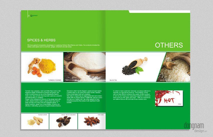 thiết kế hồ sơ năng lực công ty Hanfimex