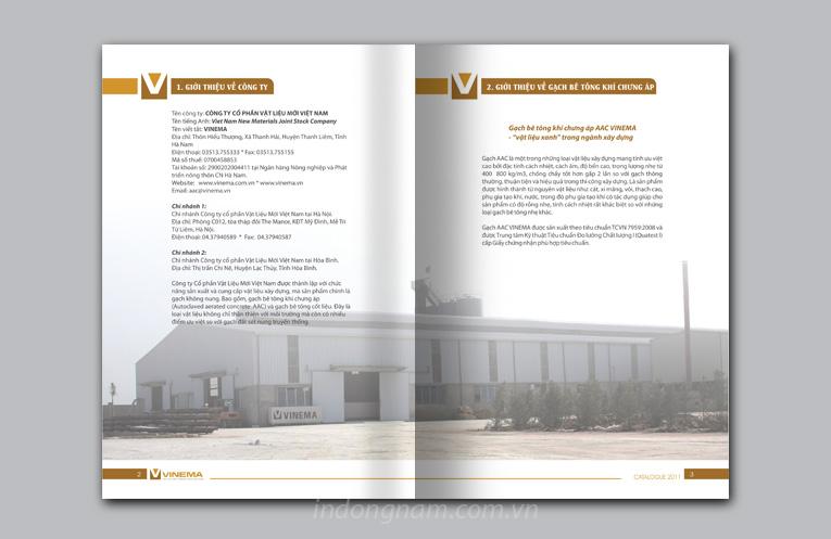thiết kế profile công ty vinema
